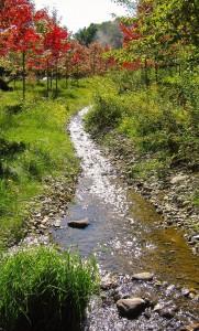 Exemple de fossé de drainage intégré à l'environnement.  Notez la présence de roches de différents diamètres, pour recréer les conditions naturelles d'un cours d'eau.